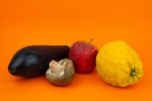 "Color pallette based on ""The Darjeeling limited"", Wes Anderson"